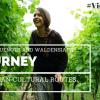 A Cultural Journey