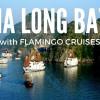 HA LONG BAY- Vietnam